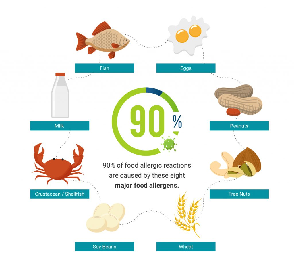 Asthma and Allergy Awareness _Inforgraphics 2 1