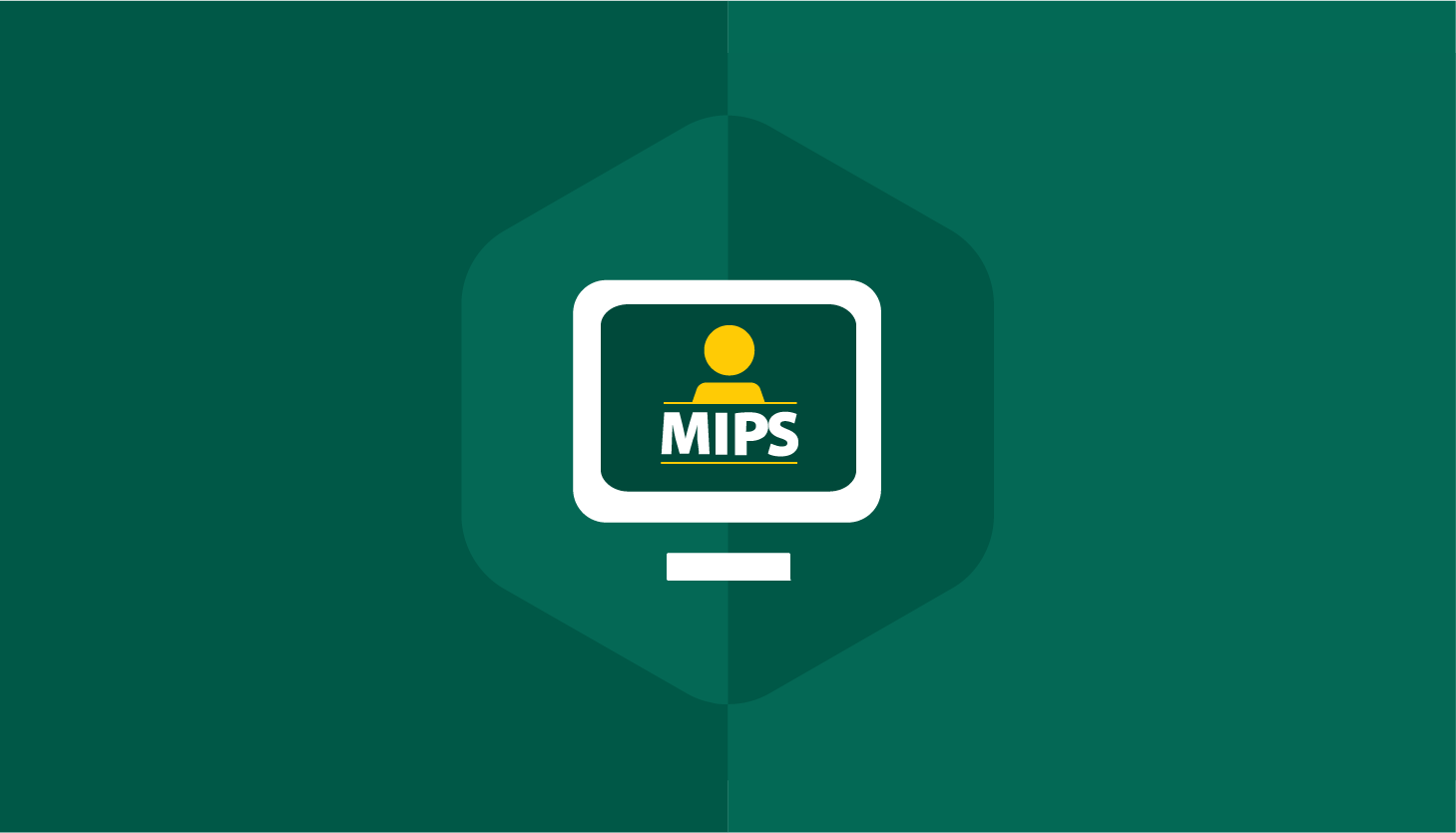MIPS Audits-01
