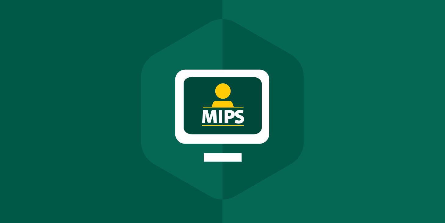 MIPS_Hubspot